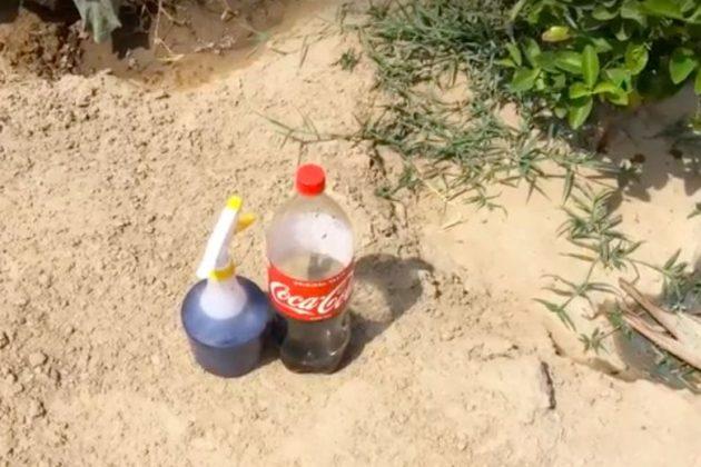 Μην πετάτε την κόκα κόλα που έχασε το ανθρακικό της – Χρησιμοποιήστε την στο κήπο σας